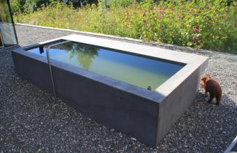 Beton-Brunnen